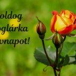 Boglárka névnapi képeslap