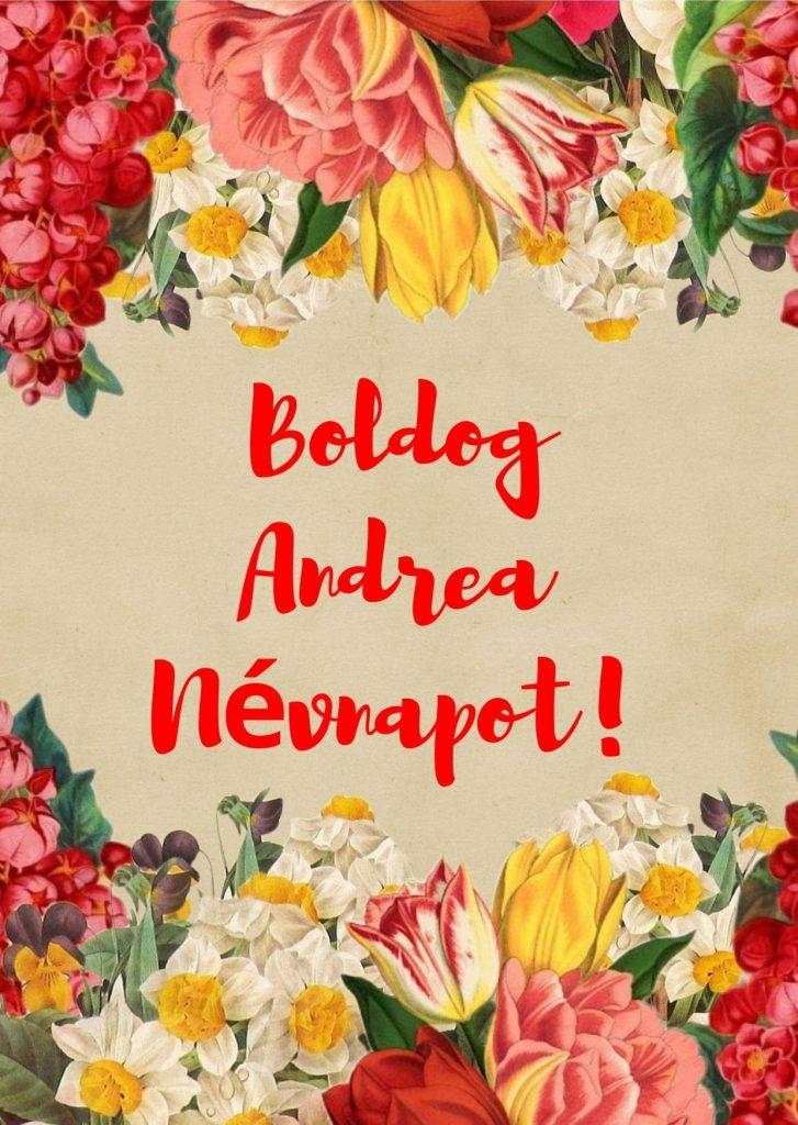 andrea névnap képeslap