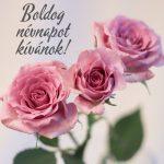 Boldog névnapot képeslap nőknek